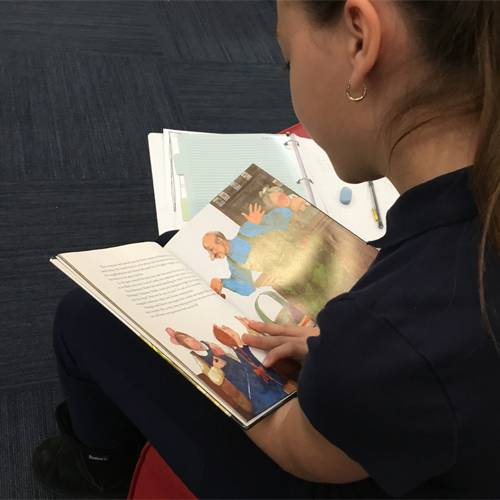 Taking a deeper look at picture books.